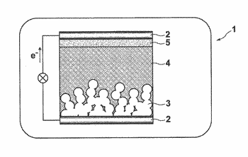 Photosensitizer and photoelectric conversion device