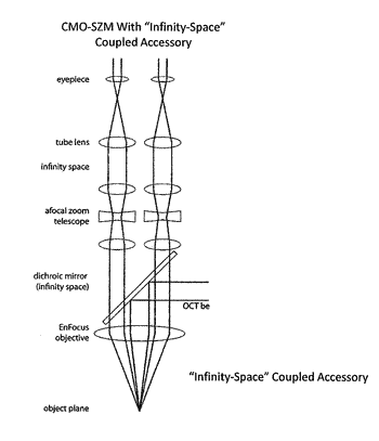 Illumination field diaphragms for use in microscopes and related methods and systems