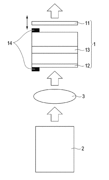 Optical amplifying element, light source device, and image pickup device