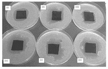 Liquid antimicrobial comprising a water-soluble polymer and a water-soluble antimicrobial agent