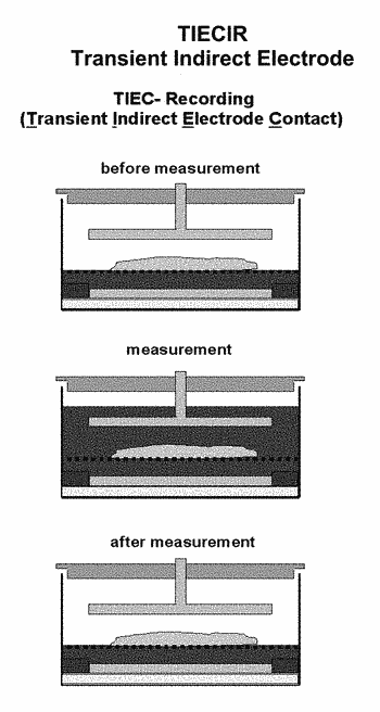 Device and method for measuring impedance in organotypic tissues