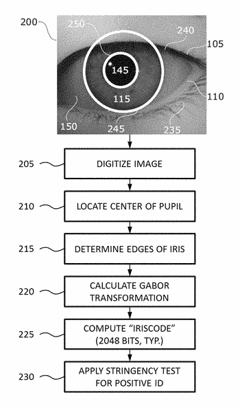 Systems and methods for discerning eye signals and continuous biometric identification