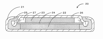 Carbon porous body, method for producing the same, electrode for storage device, and storage device