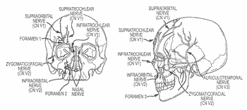 Devices, systems and methods for treatment of neuropsychiatric disorders