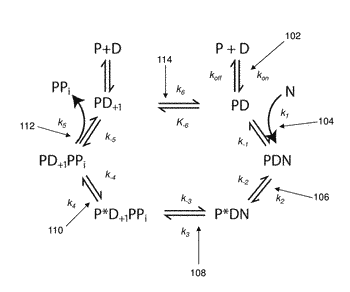 Sequencing reactions with lithium for pulse width control