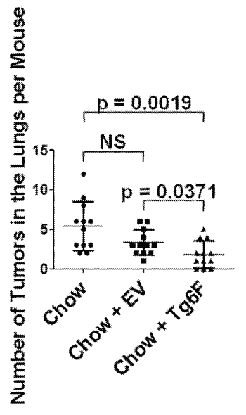 Method to concentrate apoa-1 mimetic peptides transgenically expressed in plants