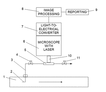 System and method for measuring oil content in water using laser-induced fluorescent imaging
