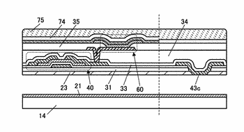 Peeling method and manufacturing method of flexible device