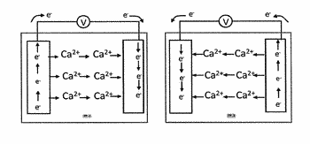 Calcium-based secondary cell and battery comprising the same