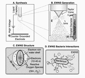 Engineered water nanostructures (ewns) and uses thereof