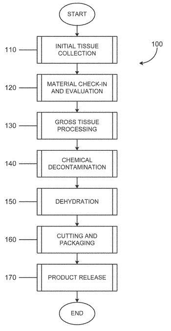 Placental tissue grafts and improved methods of preparing and using the same