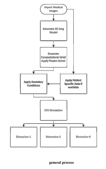 System and method for analyzing airway-pulmonary response using computational fluid dynamics to diagnose and monitoring ...