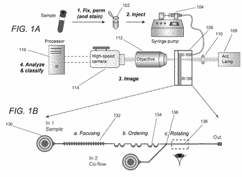 Systems and methods for automated single cell cytological classification in flow
