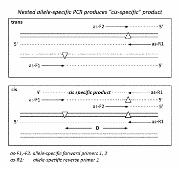 Attribute sieving and profiling with sample enrichment by optimized pooling