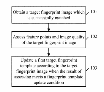 Method for fingerprint template update and terminal device