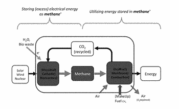 Energy storage in closed loop systems using microbial conversion of carbon dioxide to hydrocarbon fuel