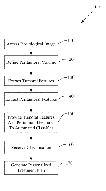 Predicting response to pemetrexed chemotherapy in non-small cell lung cancer (nsclc) with baseline computed tomography (...
