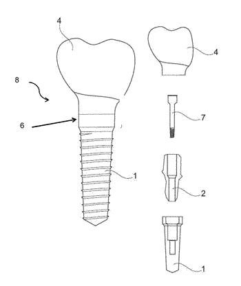 Coating of dental prosthetic surfaces comprising a distinct layer of a synthetic hydroxyapatite
