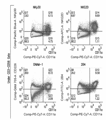 Natural killer cells and uses thereof