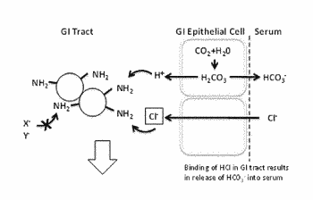 Proton-binding polymers for oral administration