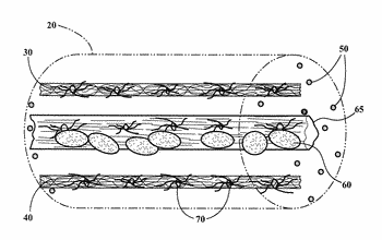 Methods and compositions relating to treatment of nervous system injuries