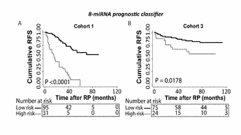 A microrna-based method for assessing the prognosis of a prostate cancer patient