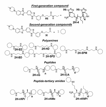 Modularly assembled small molecules for the treatment of myotonic dystrophy type 1