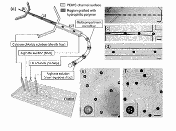 Novel droplet-embedded microfibers, and methods and devices for preparing and using same