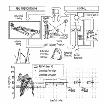 System to deliver adaptive epidural and/or subdural electrical spinal cord stimulation to facilitate and ...