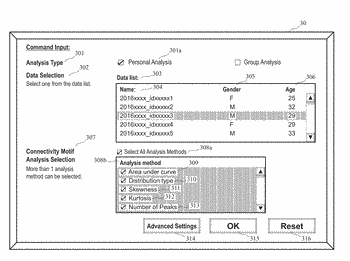 Brain connectivity analysis system and  brain connectivity analysis method