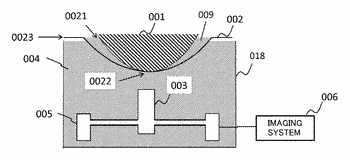 Holding member and acoustic wave apparatus