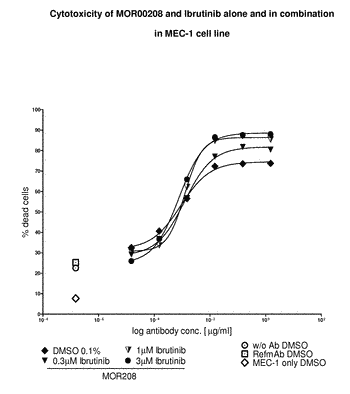 Combination of an anti-cd19 antibody and a bruton's tyrosine kinase inhibitor and uses thereof